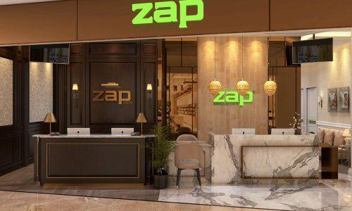 zap-view-1