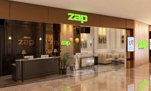 zap-view-2