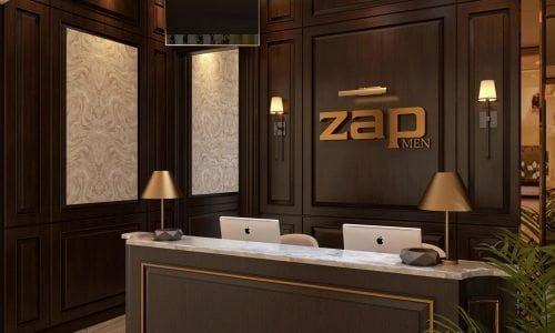 zap-view-3