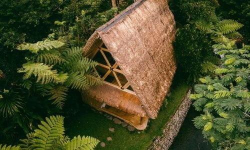 hotel di Bali dengan view hutan hujan